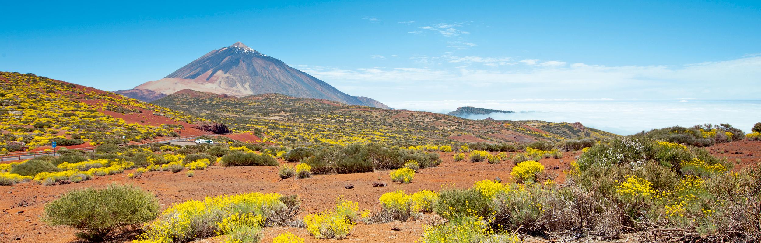 Réserver vos prochaines vacances à Tenerife avec Liege Airport